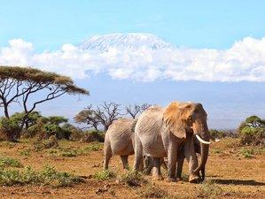 6 Days Adventure Tour Safari in Kenya