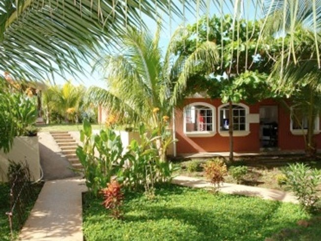 8 Days Affordable El Salvador Surf Camp and Surfari