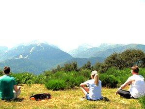 4 Day Europe Online Musicking Mindfulness Meditation Retreat