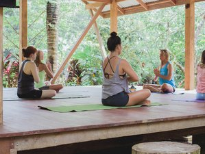 7 Day Costa Rica Yoga Retreat and Adventure Getaway
