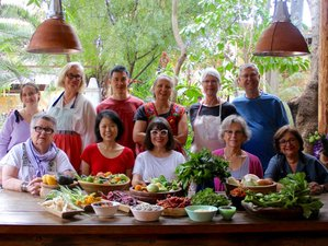 7 Day Women's Culinary Vacation in Oaxaca, the Culinary Mecca of Mexico