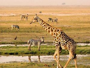 3 Days Maasai Mara Game Reserve Group Safari in Kenya