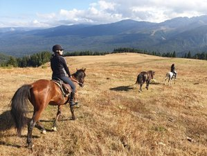 7 Day Horse Riding Adventure in the Magical Mountains of Rila, Verila and Plana