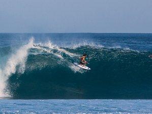 7 Days Incredible Surf Camp in Veraguas, Panama