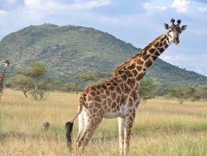 8 Days Camping Safari in Tanzania