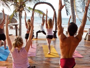 6 Days 50-Hour 5 Elements Yin Yoga Teacher Training and Detox Retreat in Tulum, Mexico