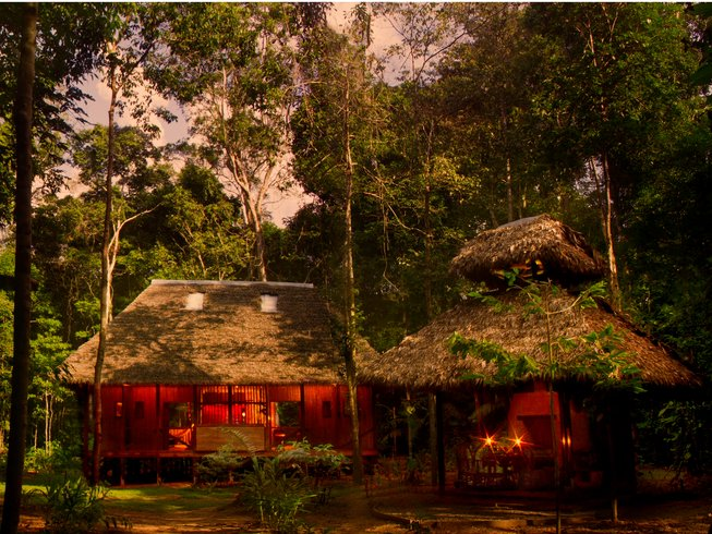 5 Days Amazon Yoga Retreat in Madre de Dios Region, Peru