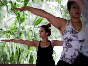 6 Day Tailor-made Tour with Ayurveda Culinary and Yoga Holiday in Kerala