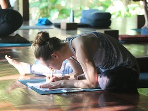 22 Day 200-Hour Yoga Teacher Training in Koh Samui