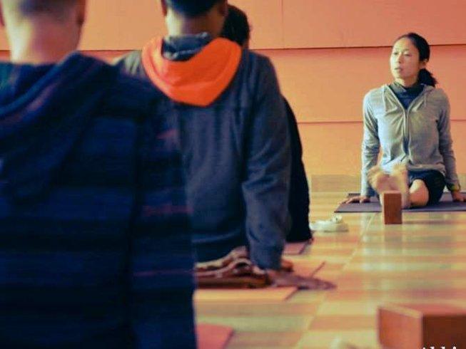 26 días profesorado de yoga multiestilo, 200 horas en Dharamsala, India