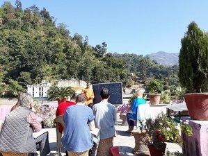 15 Days Yoga and Meditation Retreat in Rishikesh, India
