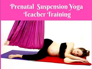 3 Day 20-Hour Online Prenatal Suspension Teacher Training