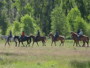 4 Days Horseback Riding and Ranch Stay in Evanston, Wyoming