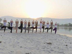 Flexible Online Yoga Teacher Training with 200 Hour Certification