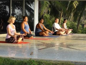 15-Daagse Spa en Yoga Retraite in India
