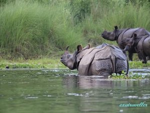 6 Day Chitwan National Park Safari and Himalaya Tour in Nepal