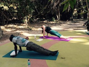 8 Days Meditation and Yoga Retreat in Gambia