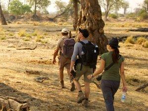 4-Daagse Mana Shoreline Wandel Safari in Zimbabwe