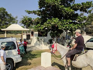 8 Day Discover Mewar Heritages and Culture Horse Riding Holiday in Udaipur