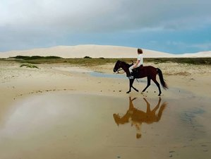 8 Day Ultimate Horseback Riding to Discover the Beauty, Culinary and Culture of Maranhão