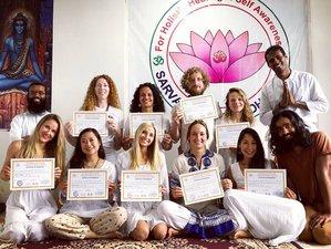 28 Day 200-Hour Dual Style Yoga Teacher Training in Dharamshala
