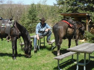 5 Day Economy Week Stay Ranch Vacation and Horseback Riding Holiday in Manitoba