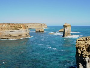 2 Days Great Ocean Road and Phillip Island Wildlife and Sightseeing Tour in Australia