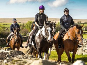 4 Days Saddles, Spa, and Castle Stay Horse Riding Holiday in Dartmoor, UK