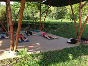 4 Days Rainforest Yoga Holiday in Lake Arenal, Costa Rica