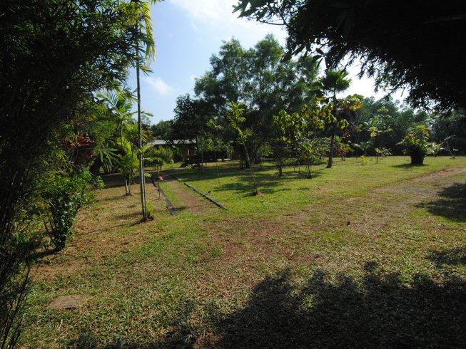 21 Tage Abnehm, Detox und Yoga Retreat in Bentota, Sri Lanka