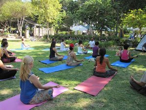 28 Days 200 Hours Yoga Teacher Training in Rishikesh, India