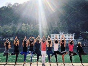 24 Days 200-Hour Traditional Hatha and Ashtanga Vinyasa Yoga Teacher Training in Rishikesh, India