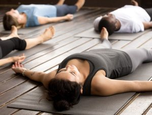 2 Day Yoga Nidra - Deep Dive Online Course