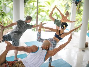 28 Days 300-Hour Yoga Teacher Training + Holistic Business Fundamentals in East Bali