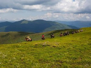6 Days Practical Course and Horse Riding Holiday in the Carpathian Mountains, Ukraine