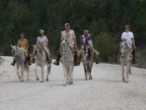 8 Days Memorable Horse Riding Holiday in Andalusia, Spain