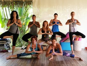 8 Day Yoga On and Off the Mat: A Yoga Retreat Experience in Playa Grande