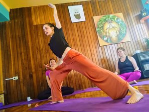 3 Day Online Pachānanda Reiki Training Course