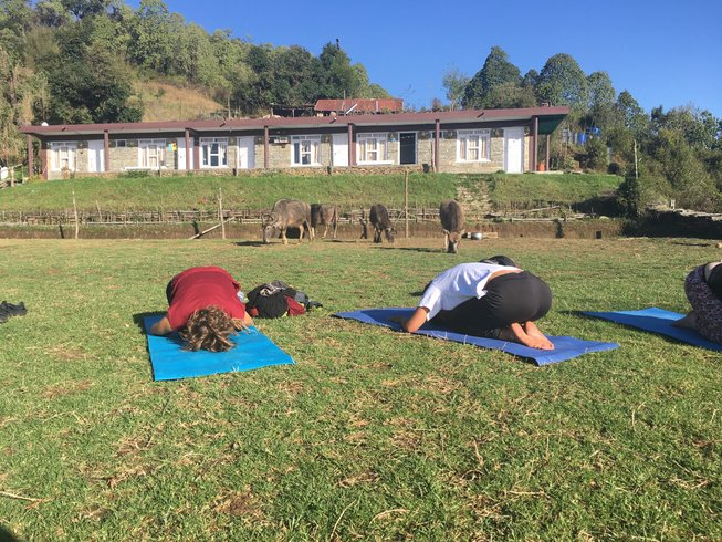 2 Days Trek, Wellness, and Yoga Retreat in the Himalayas, Nepal