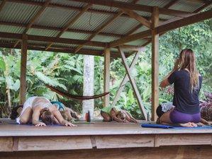 7 días retiro de yoga relajante y renovador en Costa Rica