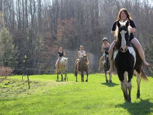 6 Days Horse Lover Camp and Ranch Vacation in Otto, New York