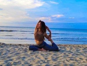 12 Days 100-Hour Chinese Meridians and Yin Yoga Teacher Training in Koh Samui, Thailand