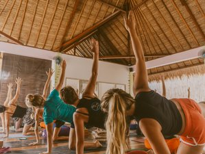 10 Day Asana, Study, and Acro Yoga Holiday in Beautiful Nusa Lembongan, Bali