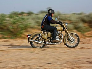 13 Day Royal Rajasthan Private Luxury Guided Motorcycle Tour in India