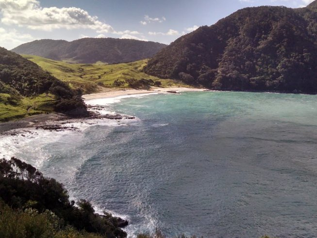 6 Days Hiking and Yoga Retreat in Northland, New Zealand