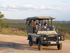 14 Days Garden Route, Cape Town, and Safari in Kruger Park, South Africa