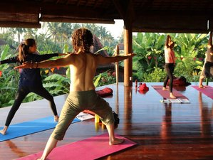 21 Day 200-Hour Bali Bliss Yoga Teacher Training in Ubud, Bali