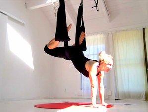 Self-Paced Online 20-Hour Bundling Aerial Yoga Play Teacher Training