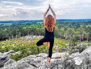 4 jours en week-end de yoga, escalade et méditation dans la forêt de Fontainebleau