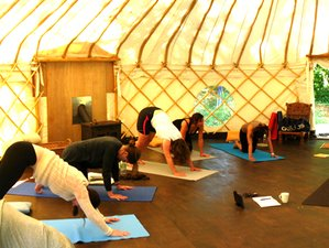 3 Days Yin and Yang Yoga Retreat in Sussex, UK